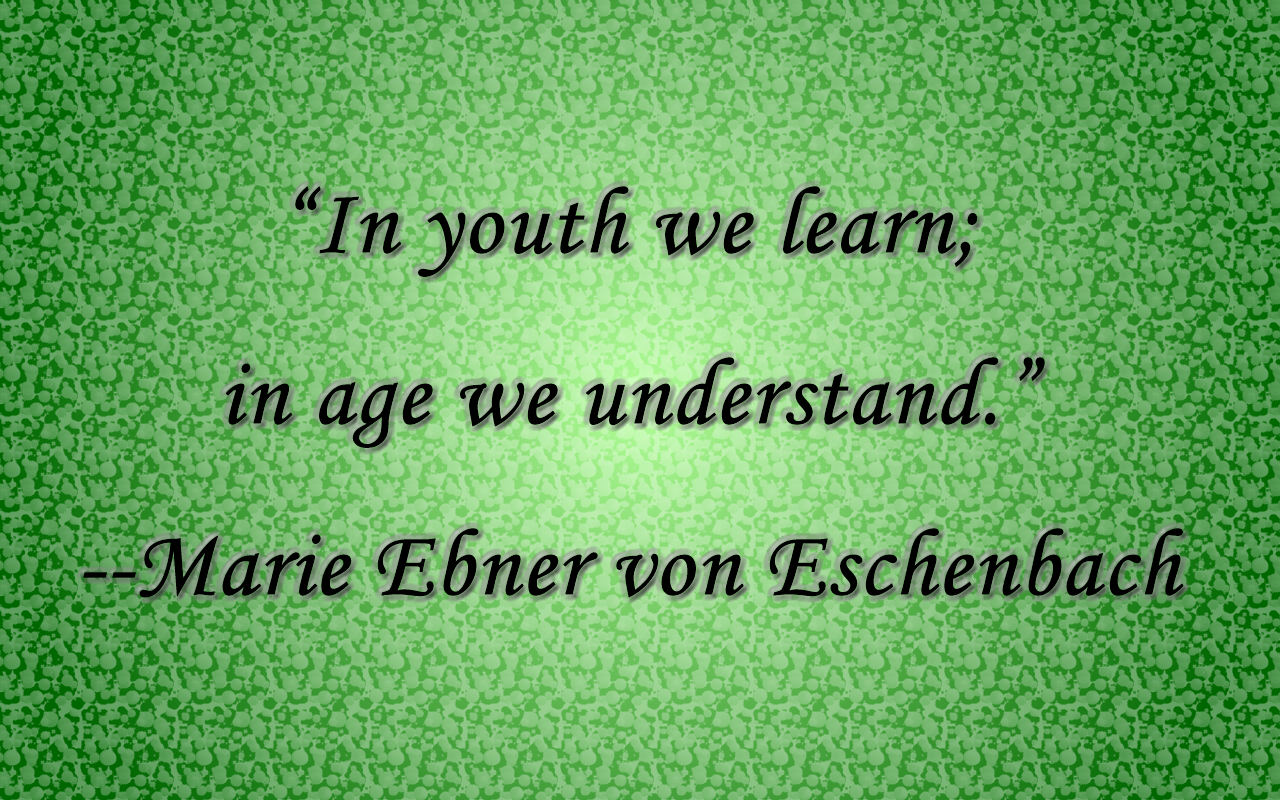 quotes like in_youth_we_learn-in_age_we_understand